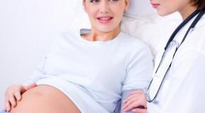 A quoi correspondent les niveaux des maternités ?
